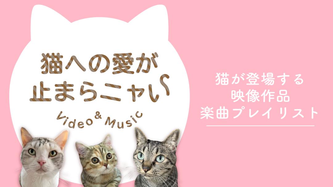 猫への愛が止まらニャい Video&Music