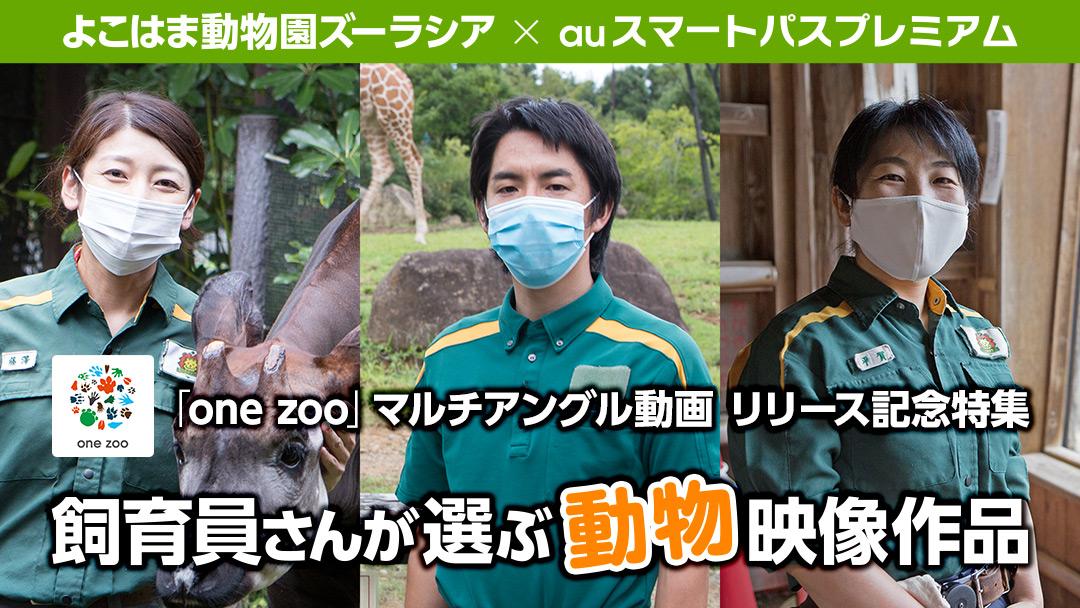 よこはま動物園ズーラシア×auスマートパスプレミアム 飼育員さんが選ぶ動物映像作品